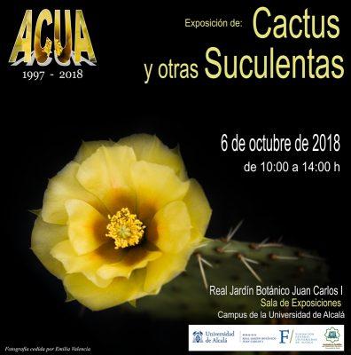 Exposición Cactus y otras Suculentas